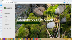 Веб-сайт mossme.ru 1