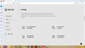 Веб-сайт mossme.ru 2